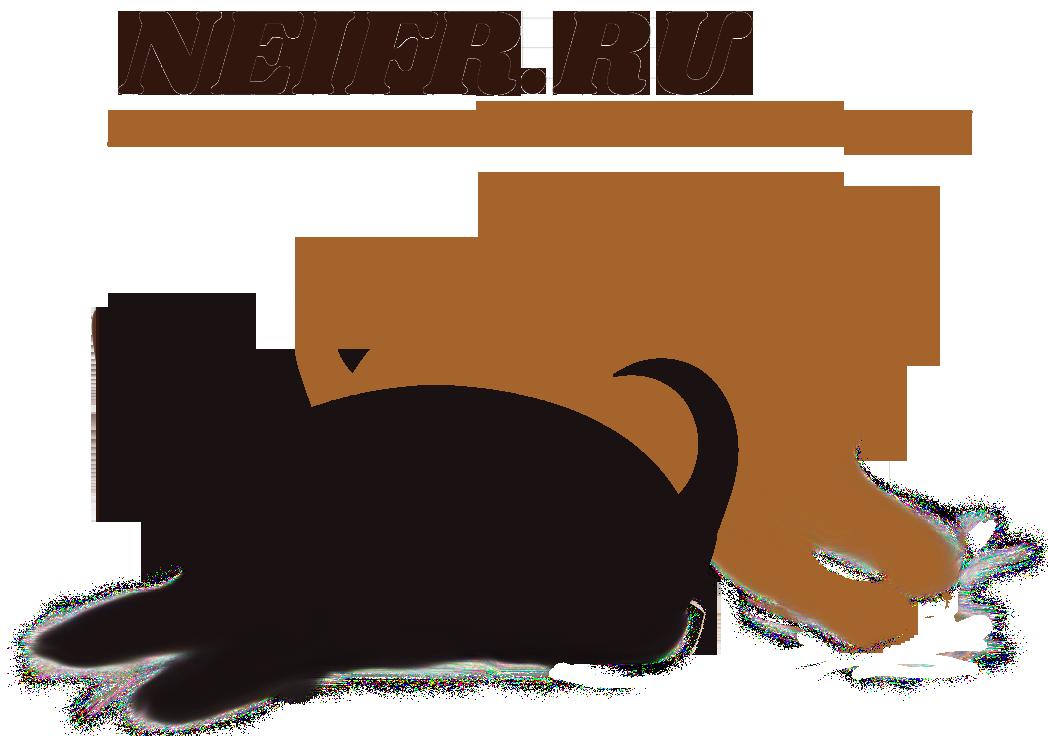 NEIFR.RU